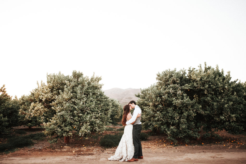 bride and groom kiss in lemon grove