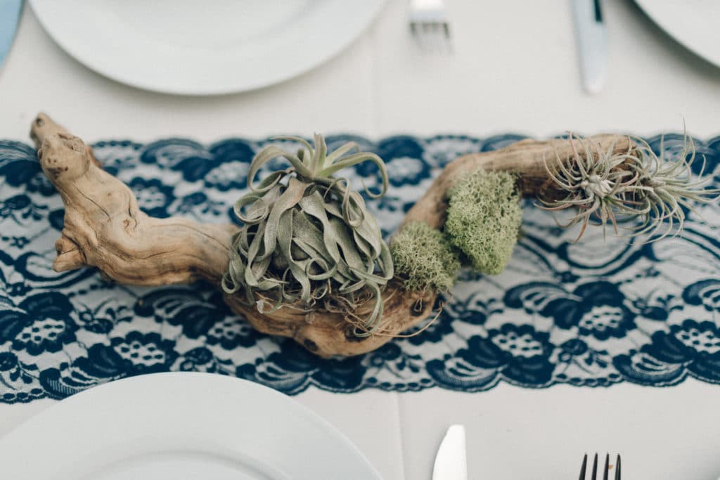 airplant centerpieces for wedding tables
