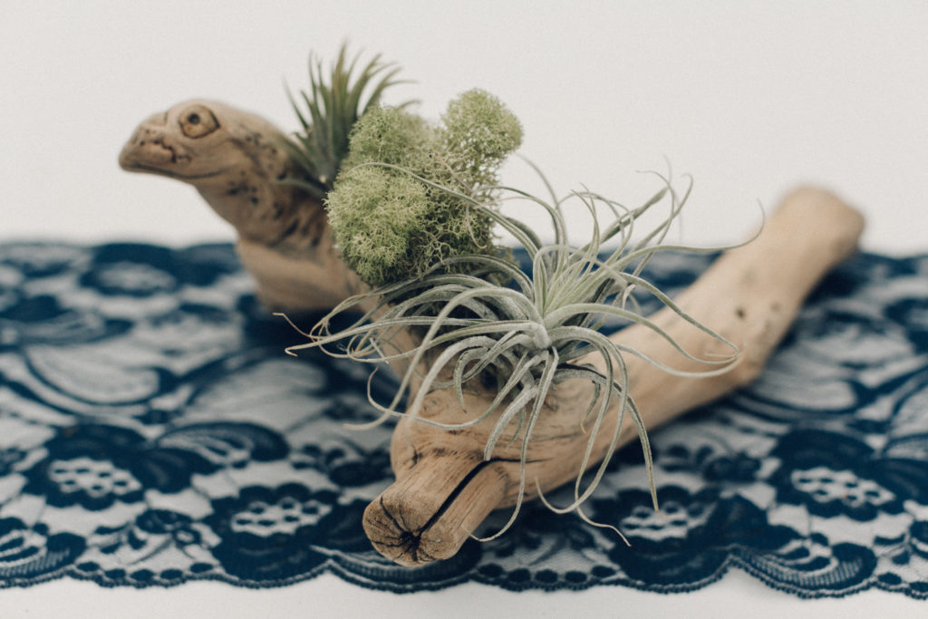 air plant centerpieces and lace