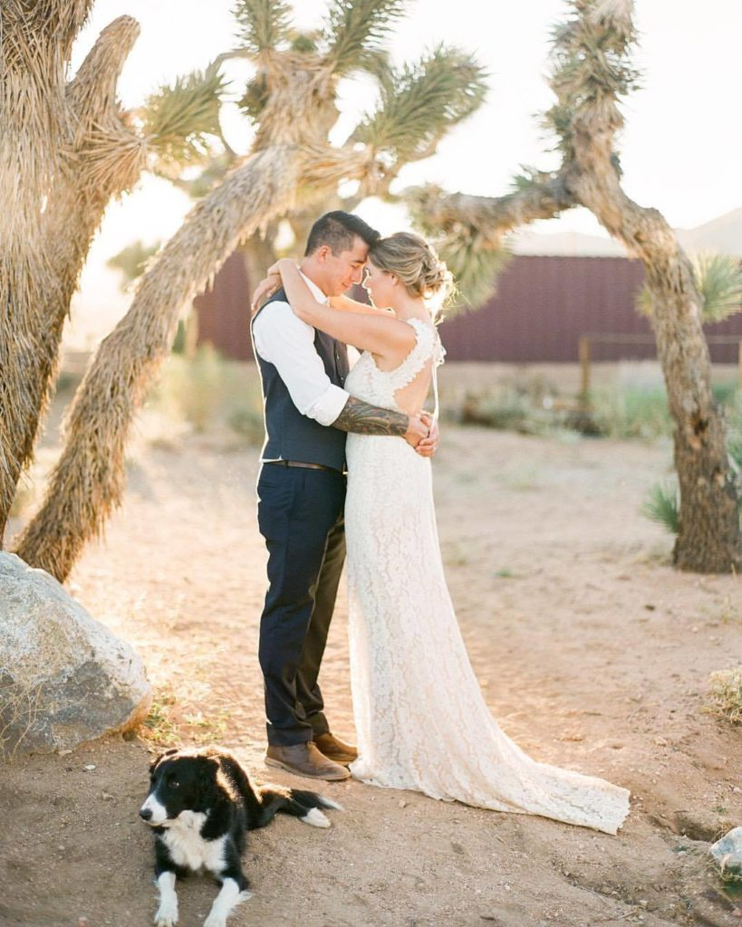 desert wedding in Joshua Tree with dog