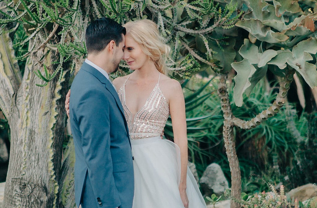 close up bride and groom sparkly gown in cactus garden
