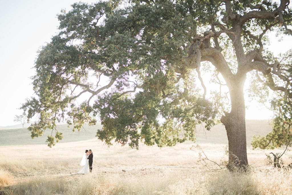 Wedding in beautiful wheat fields in California. This beautiful barn wedding was at the Santa Margarita Ranch