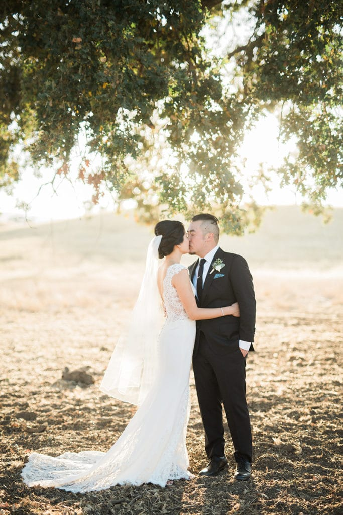 Bride and groom under big oak tree in San Luis Obispo wheat field