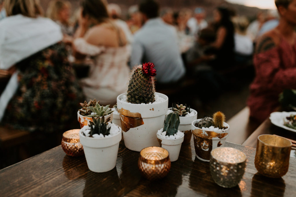 Succulent and cactus clusters on terracotta pots at desert wedding