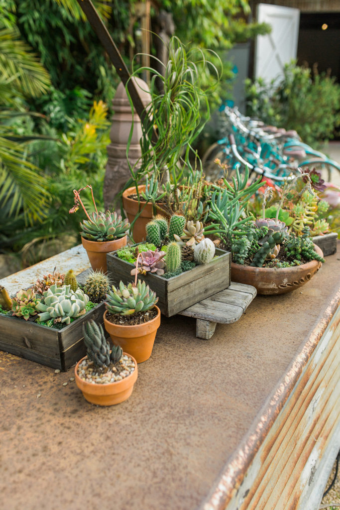 Rustic wedding decor with succulents on a metal bar