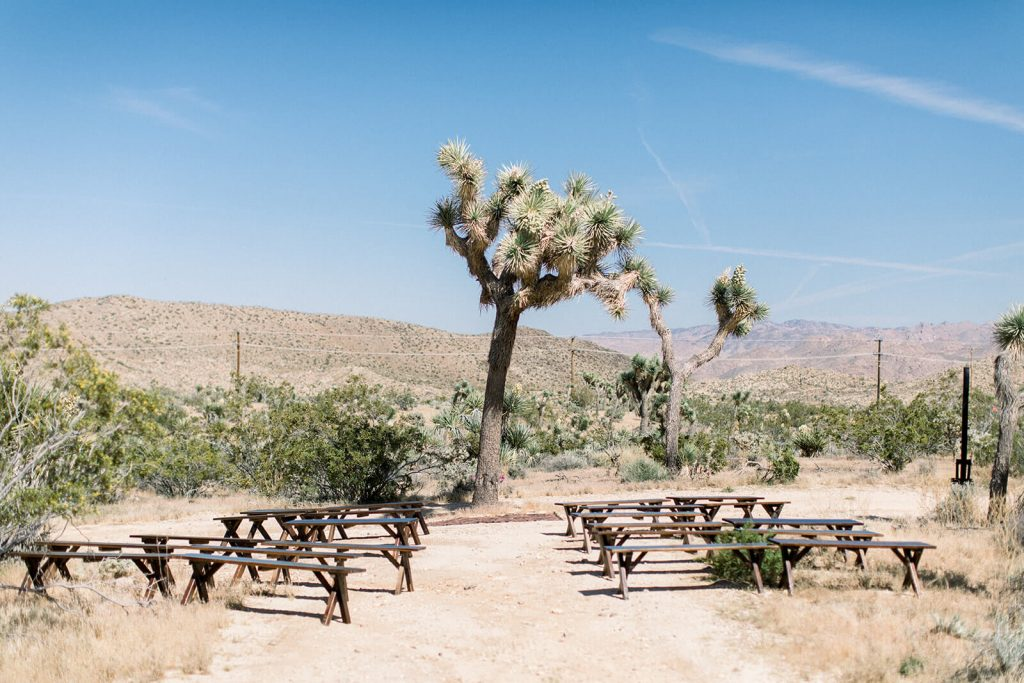 ceremony set up in Joshua Tree with long wooden benches